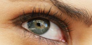 Natural Remedies for Better Vision