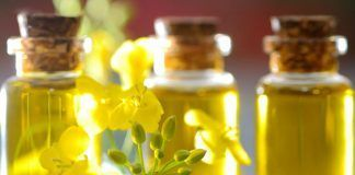 Reduce belly fat with canola oil