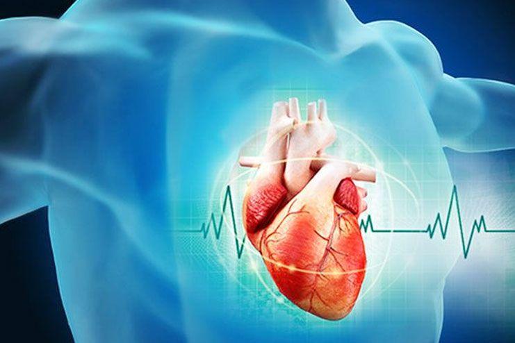 Effective in heart diseases