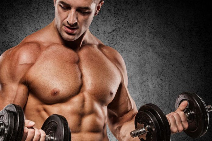 Increase muscle building
