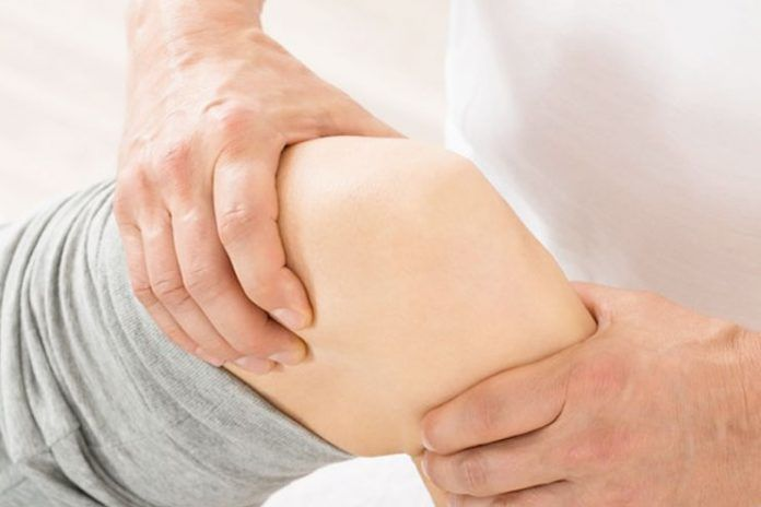 herbs to fight osteoarthritis pain