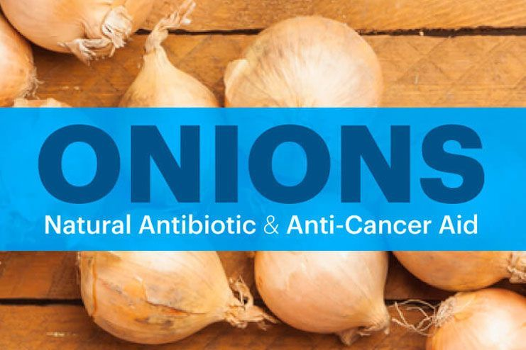 Onion may also prevent some kinds of cancer