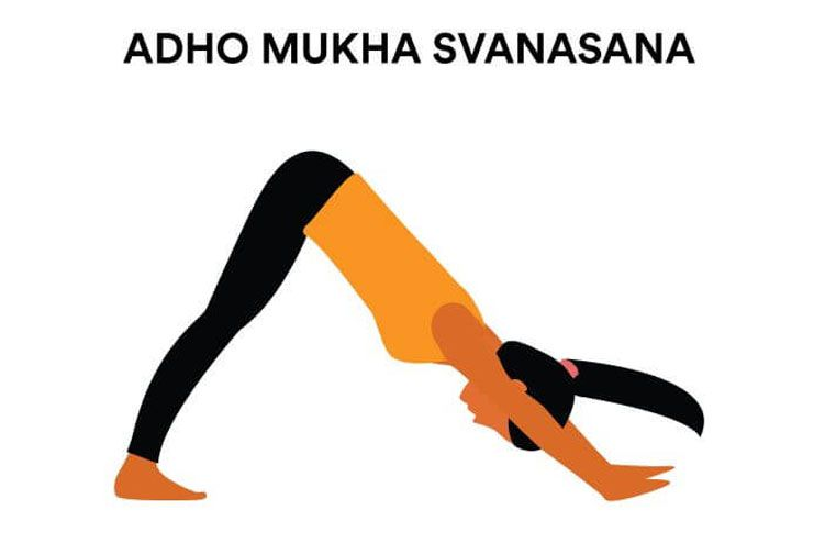 Adho mukha shavasana or downward facing dog
