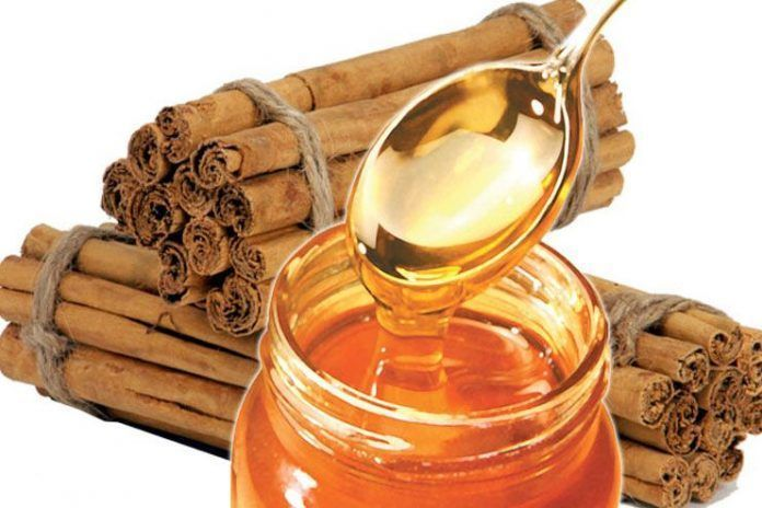 honey and cinnamon for weight loss