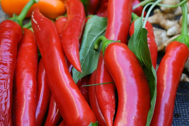 Cayenne Pepper for tongue sores