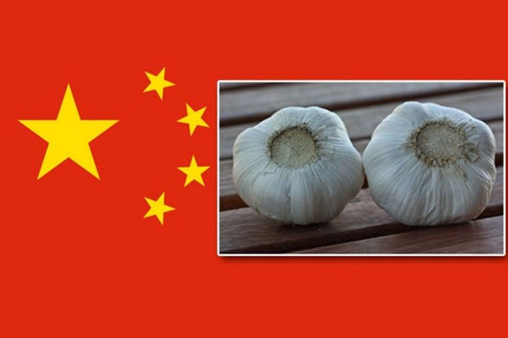 safety tips of using Chinese garlic