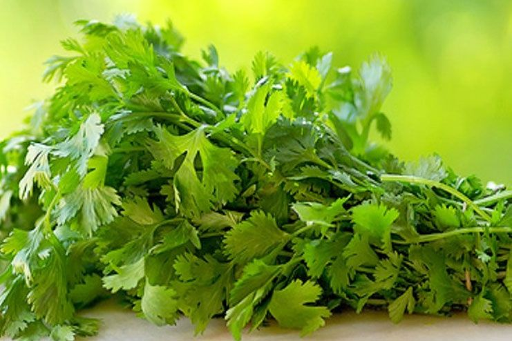 What is parsley