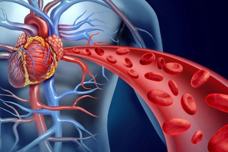 affects blood circulation