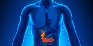 what does gallbladder do
