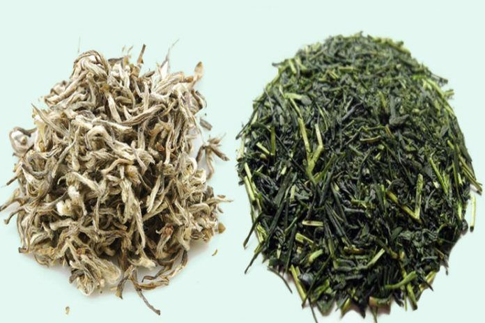 white tea, green tea