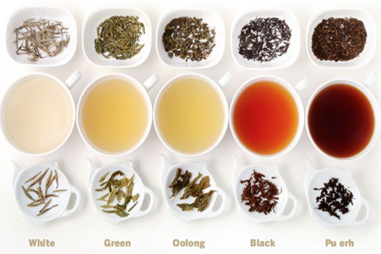 different types of teas