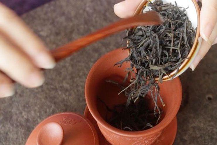 Make Oolong Tea