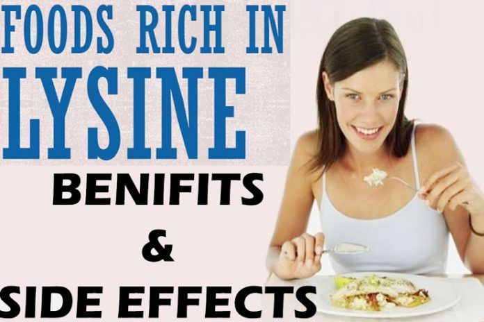 foods high in lysine