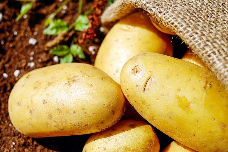Cystic Acne Treatment-Potato