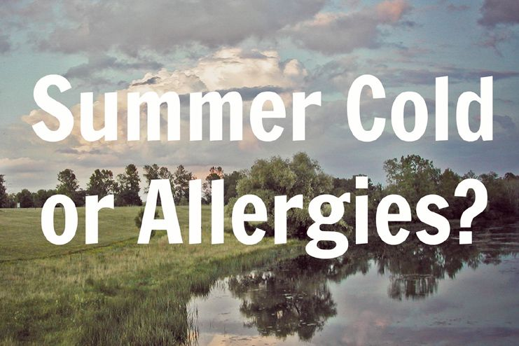 Summer Cold or Just Simple Allergies