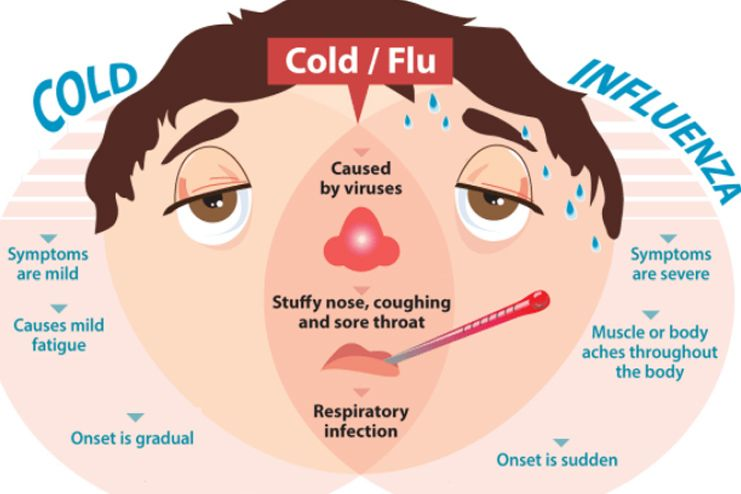 Causes of cold and flu