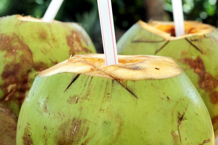 Coconut Water for morning sickness