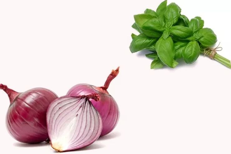Facial Hair Removal with Basil and Onion