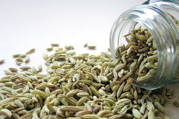 Fennel seeds for morning sickness