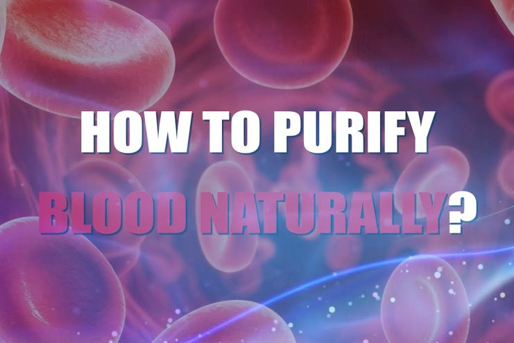 How to purify blood