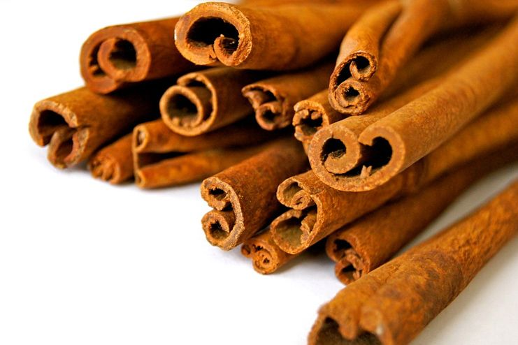 Cinnamon for Malaria Treatment