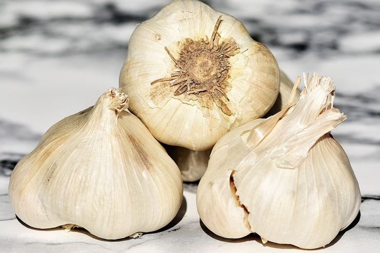 Garlic for motion sickness