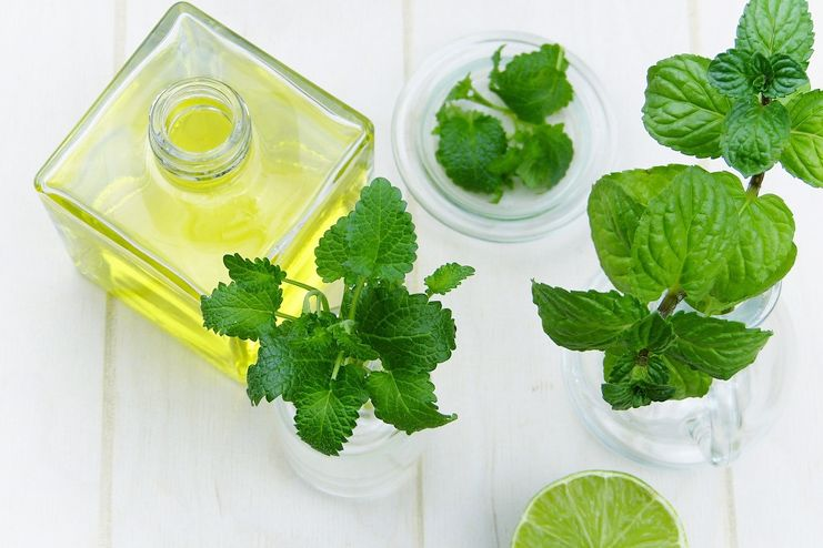 Peppermint Essential Oil for Psoriasis