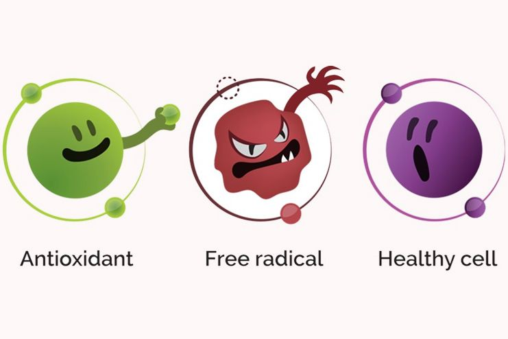 Pistachio for Antioxidant properties