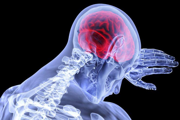 Pistachio for Brain Function