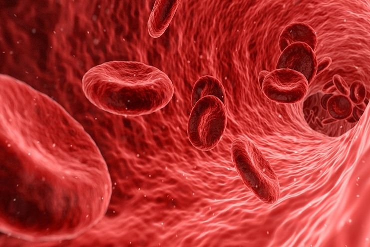 Pistachio for Health Blood Circulation