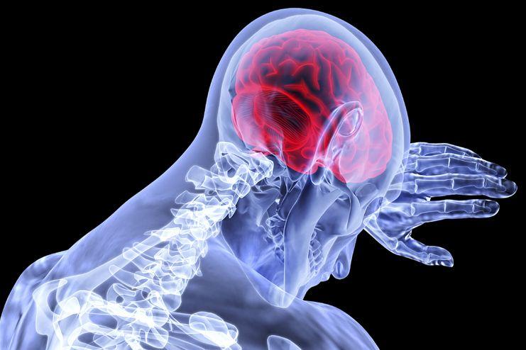 Vitamin A for Brain