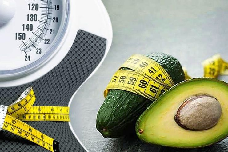 How Does The Avocado Help In Weight Loss