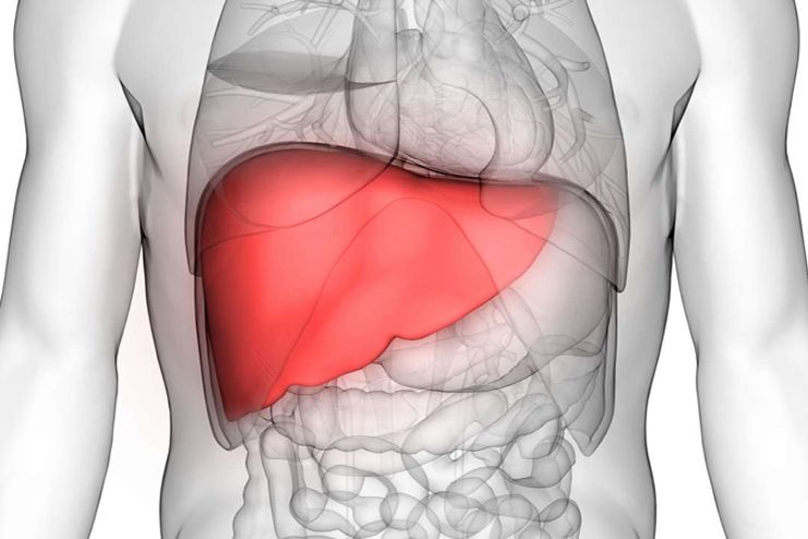 Detoxify and flush the liver