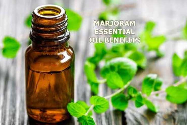Marjoram Essential Oil for Sleep