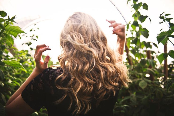 Benefits of Sunflower Seeds for Hair