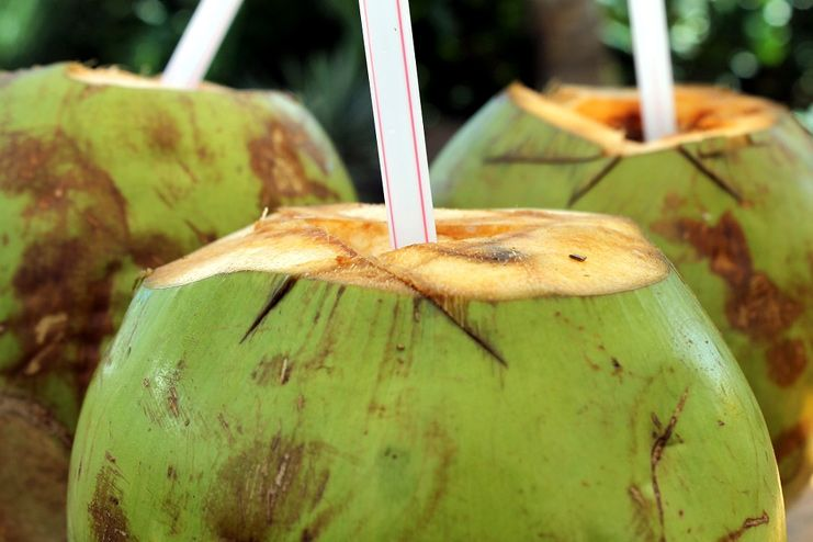 Coconut Water for Dehydration