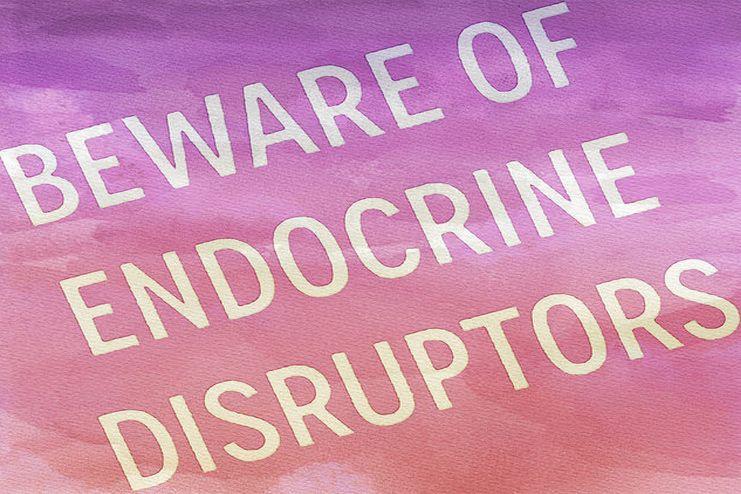 Helps Get rid of Endocrine Disruptors