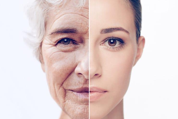 Imposes Anti-Aging properties