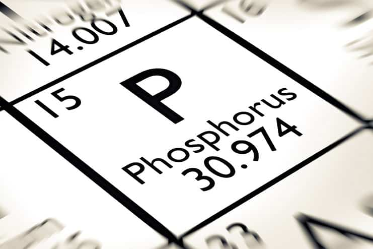 Phosphorus toxicity