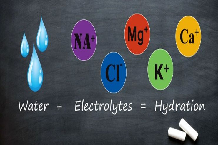 Why are electrolytes important