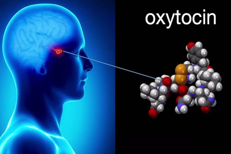 Does Oxytocin Impact Bad Memories
