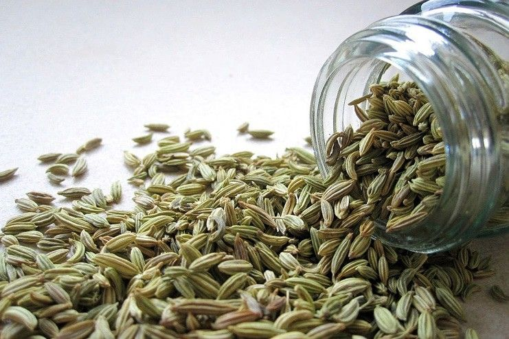 Fennel Seeds for Dry Eyes