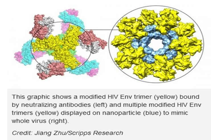HIV-Vaccine-Strategy