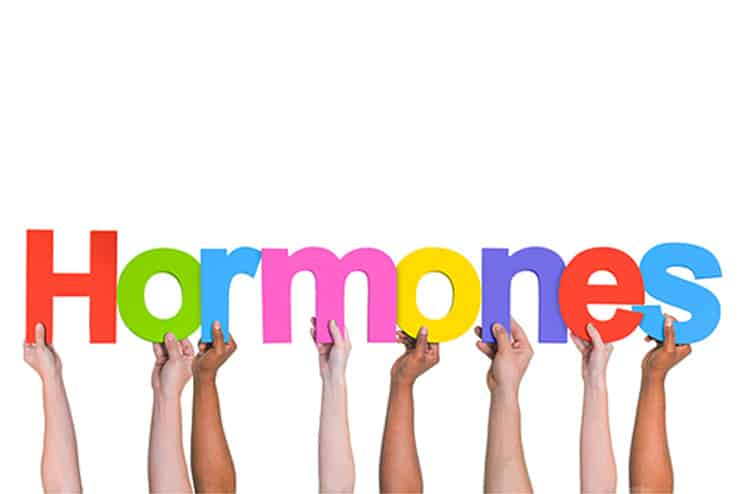Better hormonal interactions