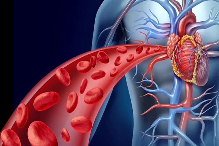 Boost Blood Circulation