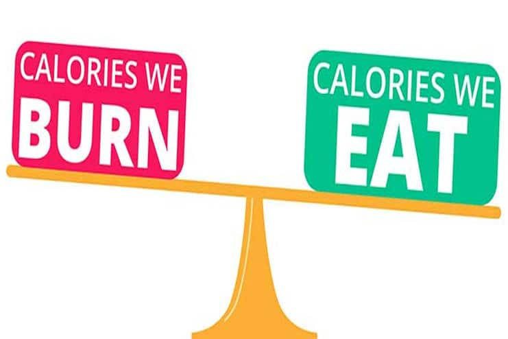 You are not maintaining the calorie deficit