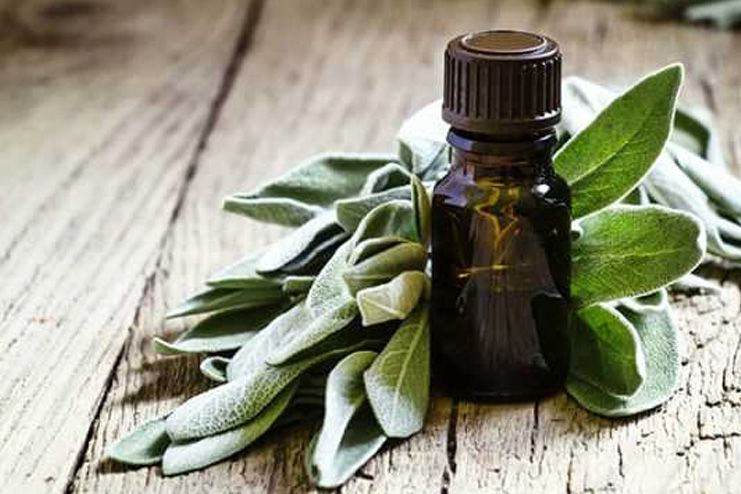 Sage and Thyme Essential Oil