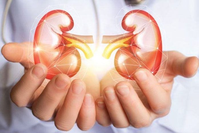 Kidney-disease