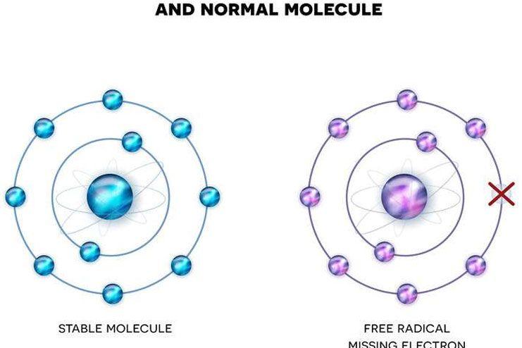Types of Free Radicals