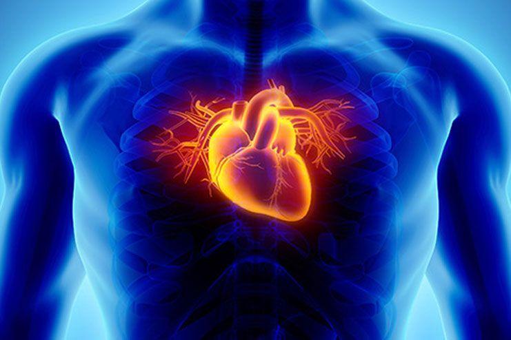 Risks of heart disease